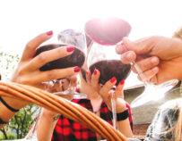 Excursión « Wine Tour » : Visita de las Explotaciones Vitivinícolas de la Región de Montpellier